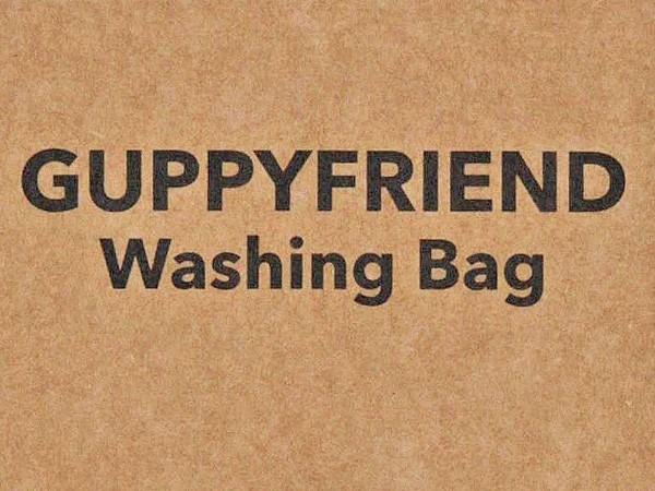 blog-guppy-friend